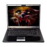 "Roverbook Pro 554 (Turion X2 1900Mhz/15.4""/2048Mb/320.0Gb)"